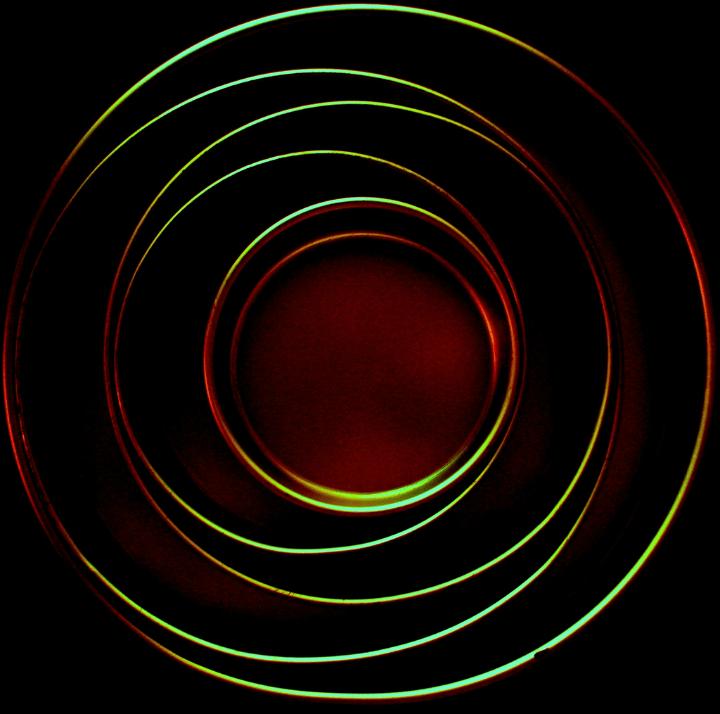 O Círculo Dourado