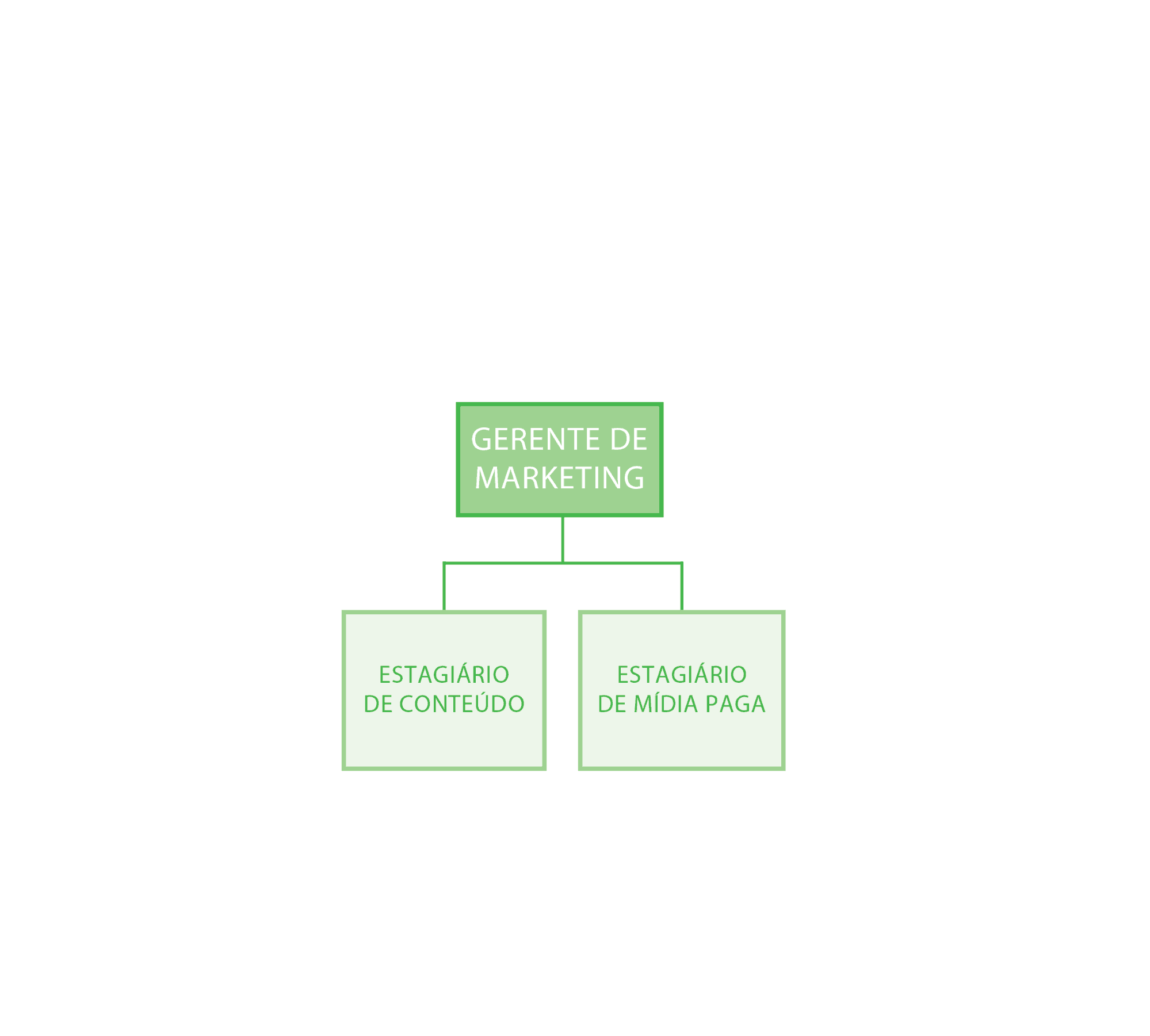 Estrutura equipe de marketing Xerpa
