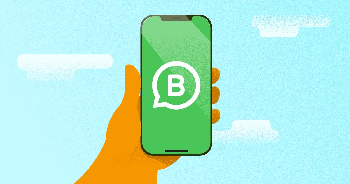 nova API whatsapp business
