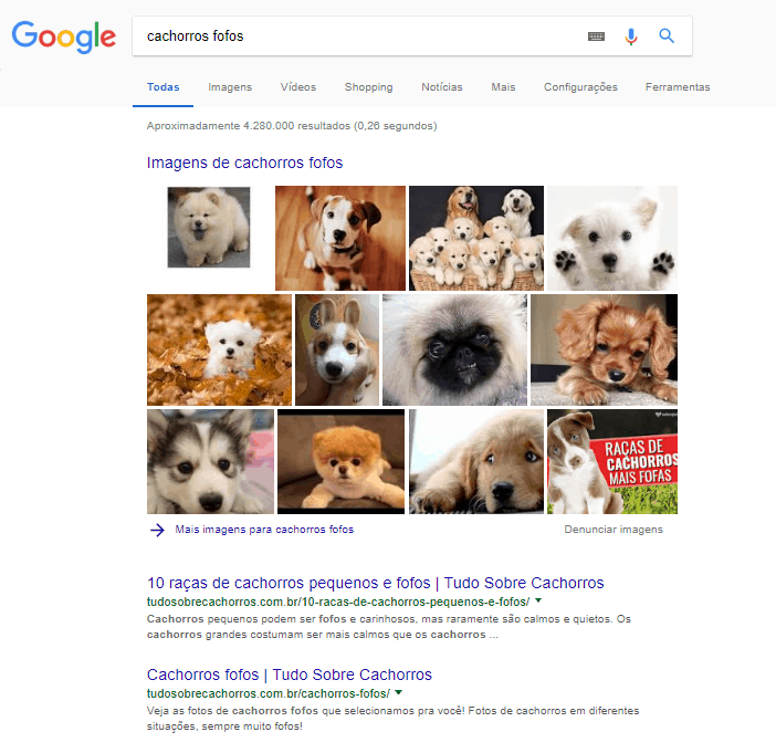 Como recuperar posições no Google: SERP para cachorros fofos