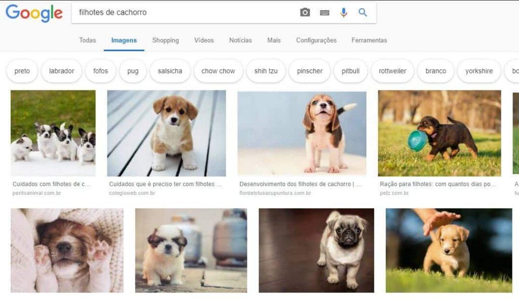 SEO para Google Imagens exemplo
