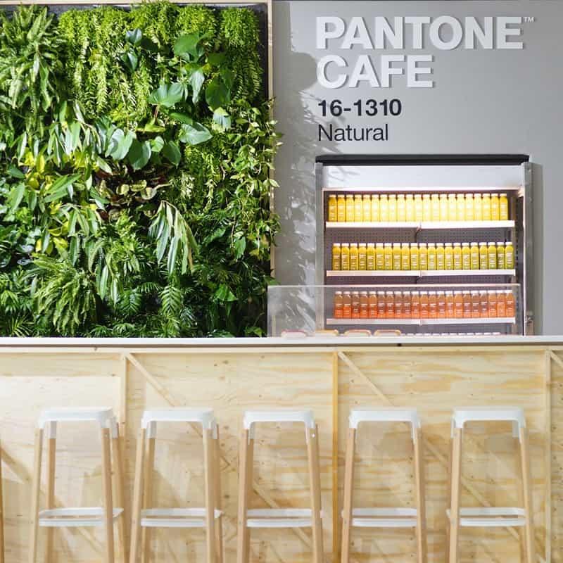 pop-up store Pantone