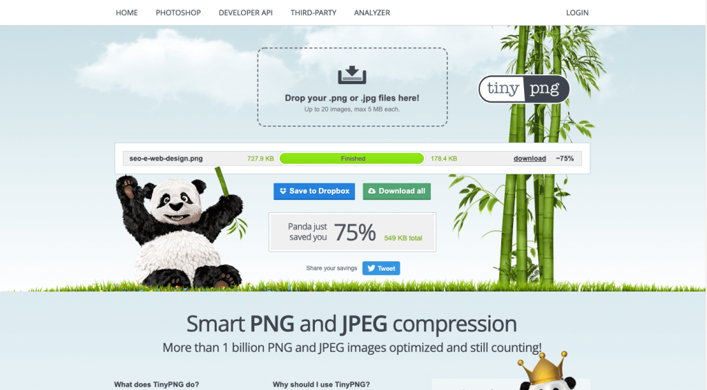 seo e web design tiny png