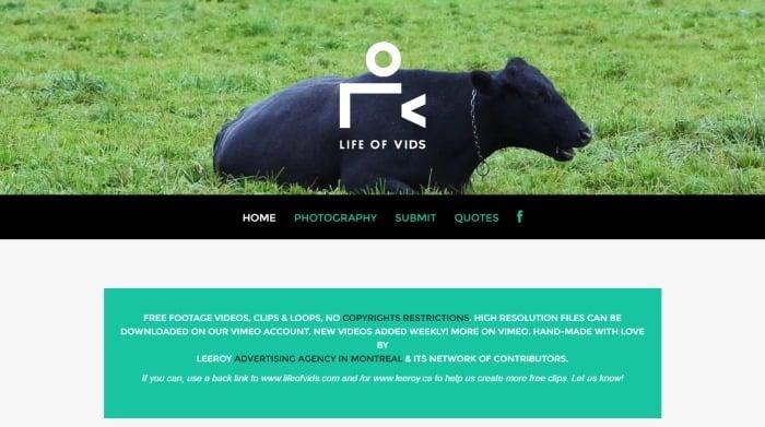 banco de vídeos life of vids