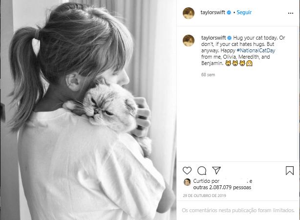 taylor swift segurando um gato