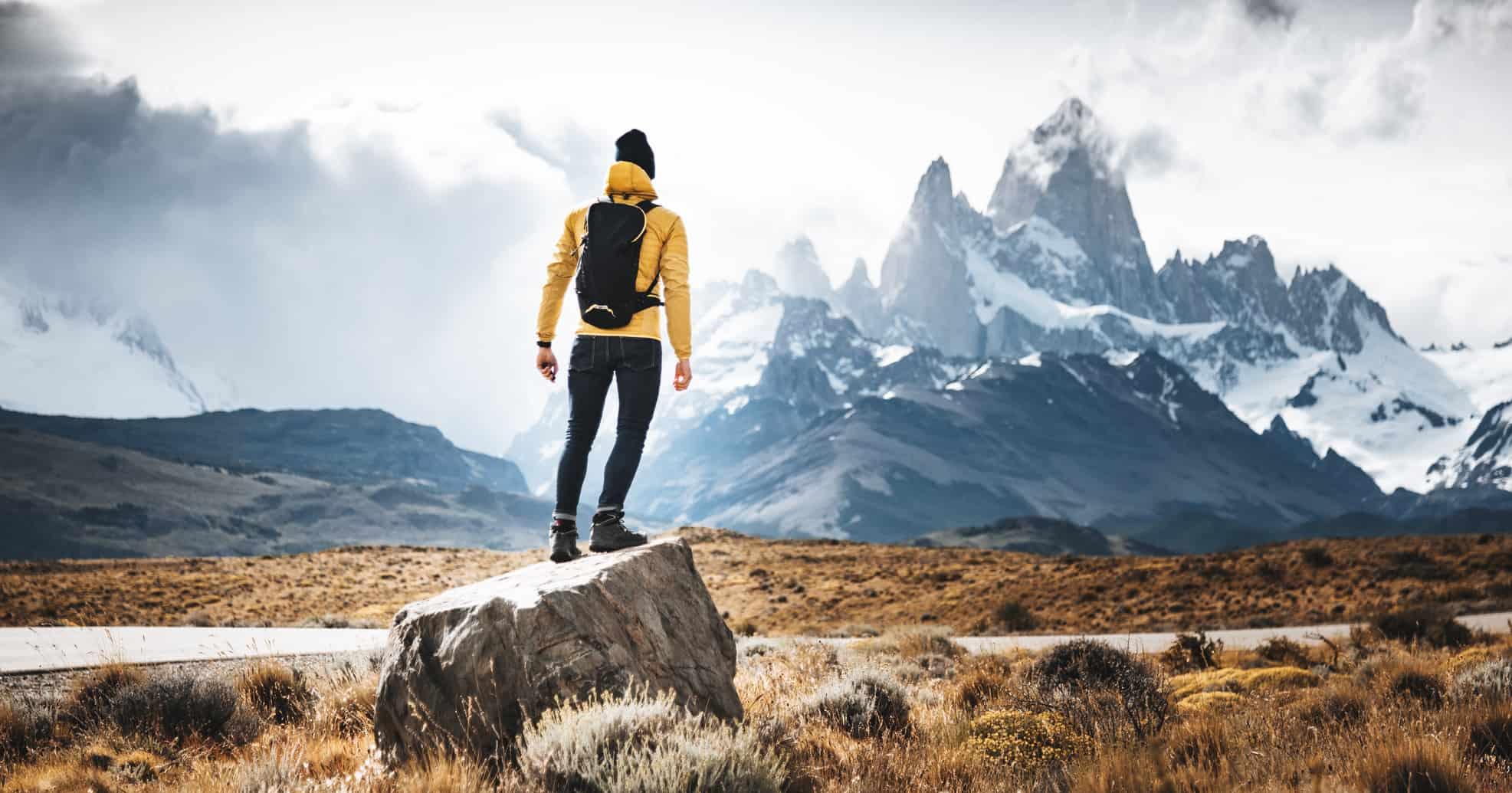 Case Patagonia