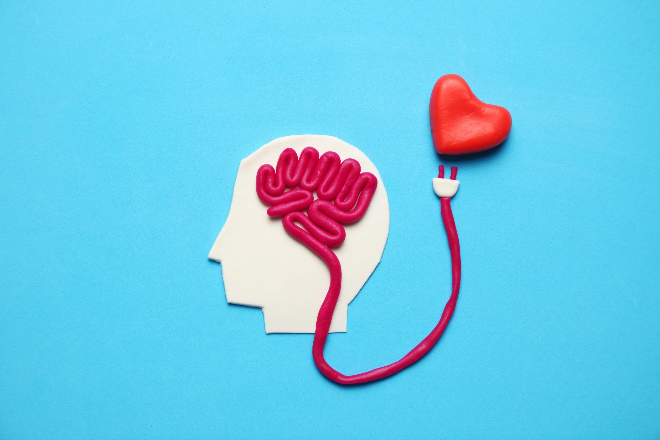 Cérebro e coração de massinha são conectados por uma linha