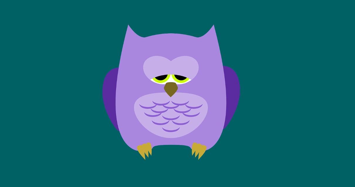 coruja com sono, representando as pessoas que certamente vão falhar na carreira freelancer