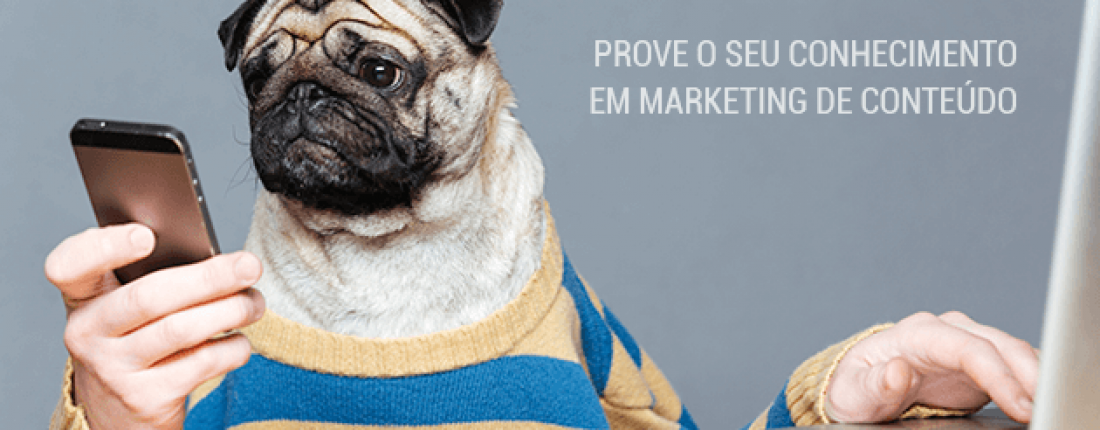 quiz-marketing-de-conteudo