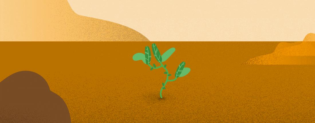 Resiliência: o que é, importância no meio profissional e 6 dicas para ser mais resiliente