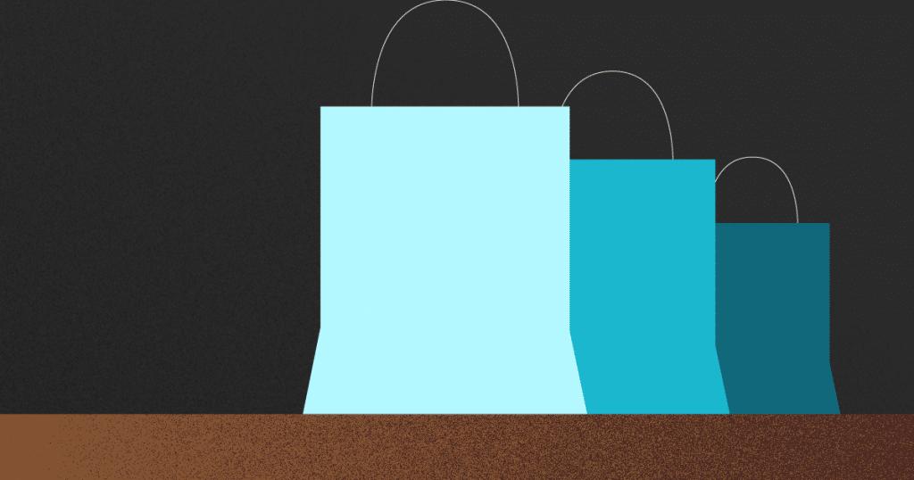 tipos de consumidores - bolsas de compras