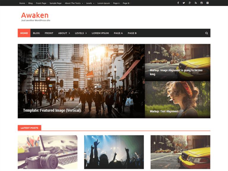 awaken wordpress themes