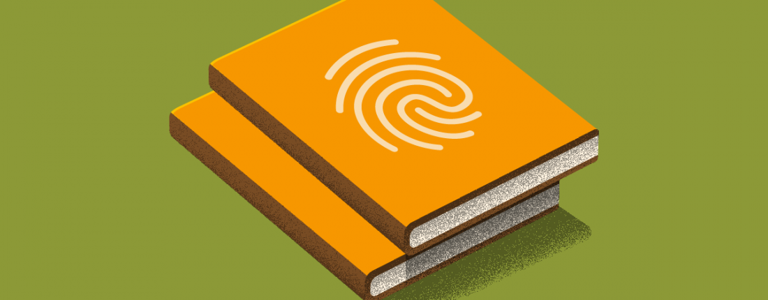qué es brand book
