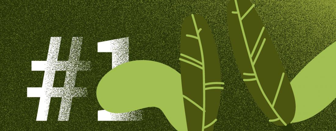 posicionamiento-orgánico-o-que-é-o-rankeamento-organico